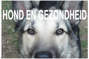 Hond en Gezondheid